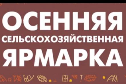 Открылась традиционная сельскохозяйственная ярмарка, на которой свою продукцию представят более 130 поставщиков из 17 регионов России