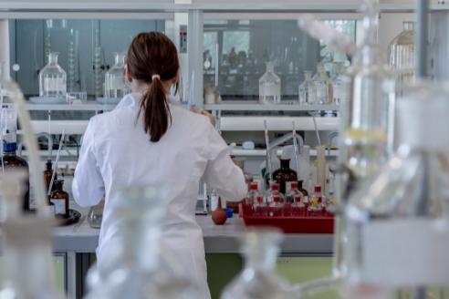 Правительство Карелии выделит до 10 миллионов рублей на проведение научных исследований образовательными и научными организациями республики