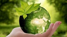 Как УО реализовать в домах на управлении принцип заботы об экологии