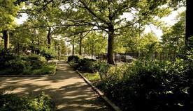 Минстрой РФ предложил создать услугу «парк в аренду»
