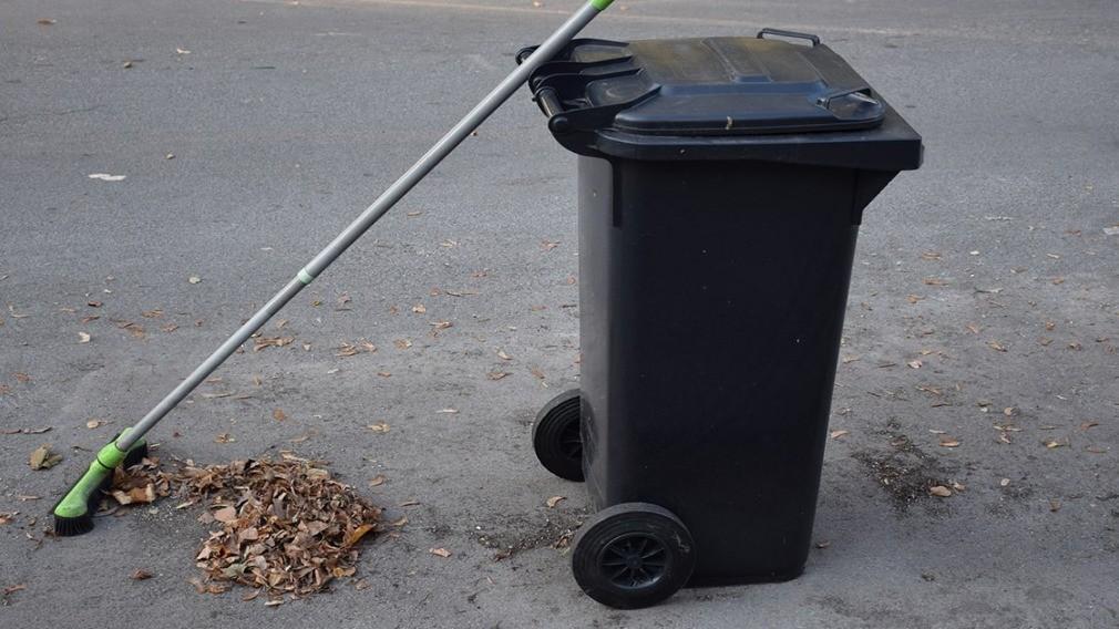 Кто должен вывозить отходы после субботника: мнения и опыт