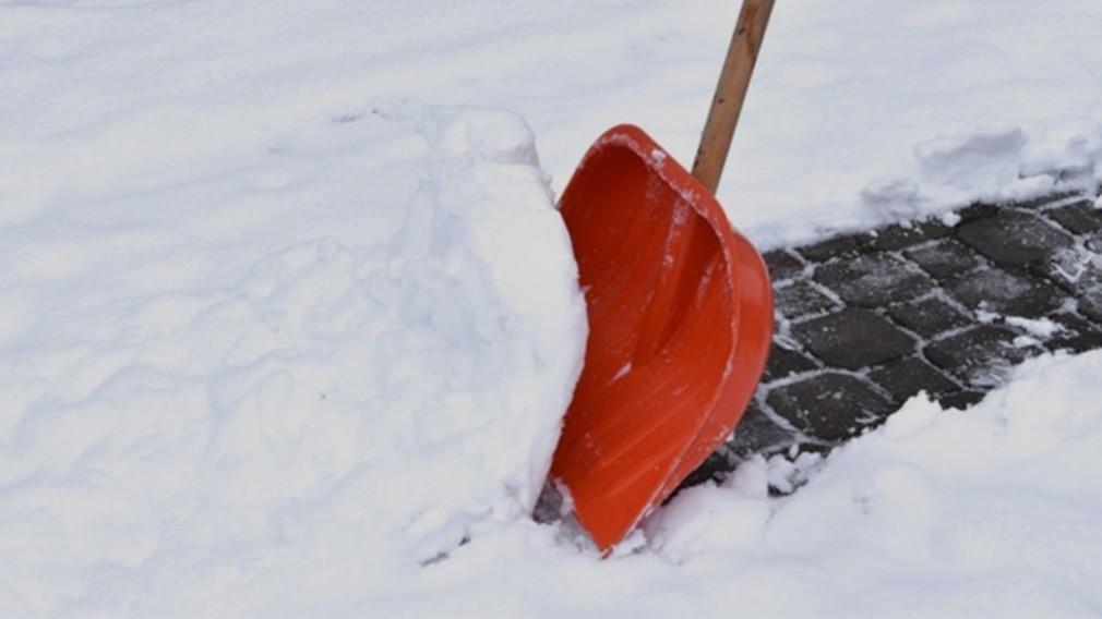 Жилинспекция проверит ЖСК в Саратове за призыв «жрать снег»