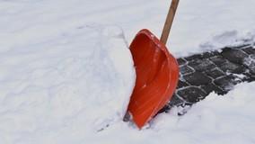 Жилинспеция проверит ЖСК в Саратове за призыв «жрать снег»