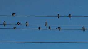 Прокуратура обязала ТСЖ зарегистрировать права на коммунальные сети