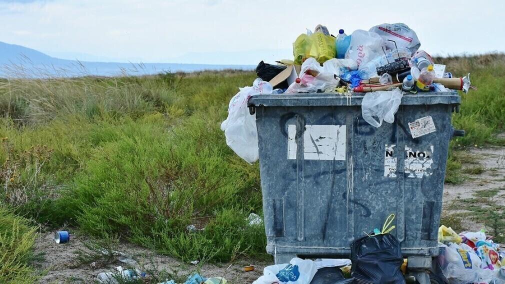 Две трети сортируемых отходов в России отправляются обратно на полигоны
