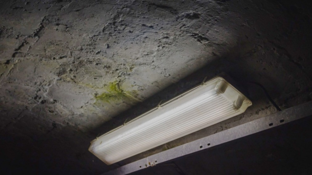Прокуратура Воркуты запретила УО хранить ртутные лампы в подвале