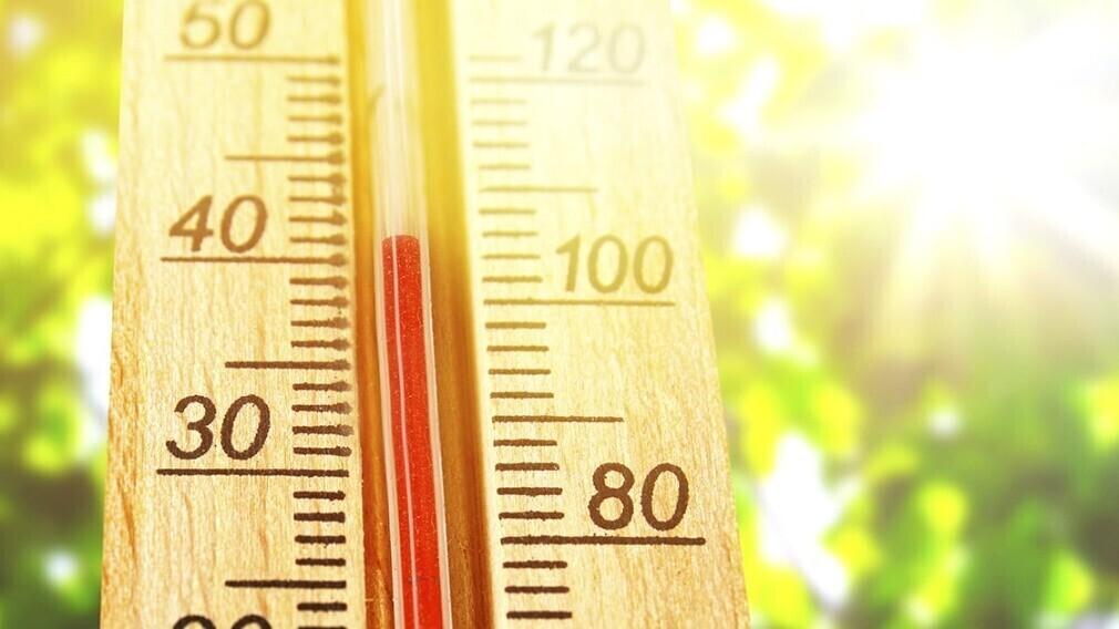Роспотребнадзор рекомендует компаниям в жару сократить рабочий день