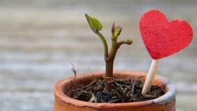 6 полезных маркетинговых приёмов для роста управляющей организации