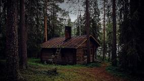 Госдума РФ в третьем чтении приняла законы о самовольных постройках