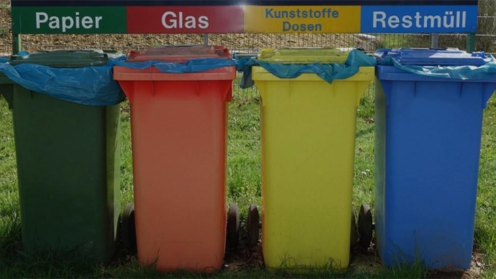 Раздельный сбор мусора должен появиться во всех крупных городах РФ