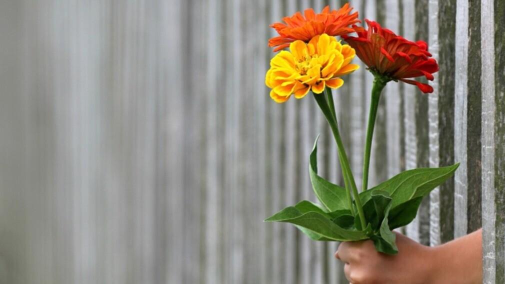 Минстрой РФ поздравил работников ГЖИ с профессиональным праздником