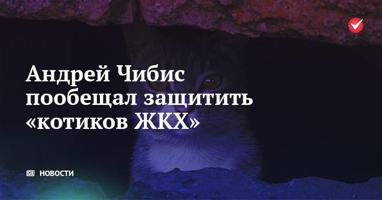 Андрей Чибис пообещал защитить «котиков ЖКХ»