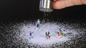 УО из Пскова предложила не использовать соль при уборке снега