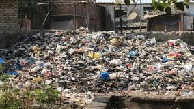 Из-за отказа УО вывозить отходы город Семилуки зарос мусором