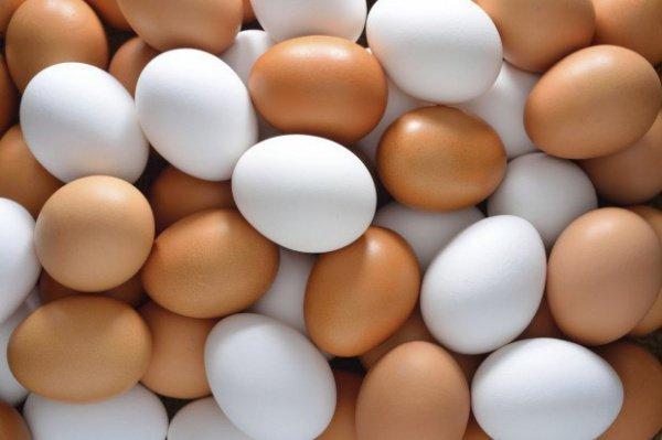 Куриное яйцо, фото 1